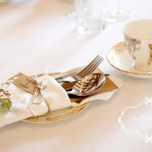 Plain Tablecloths and Napkins